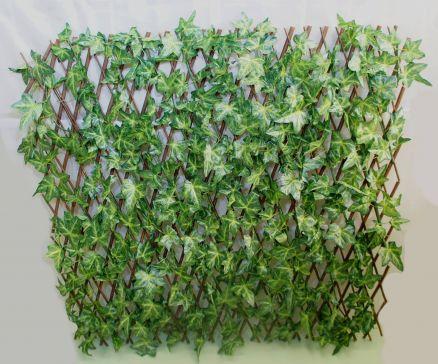 Zelenilo ograda