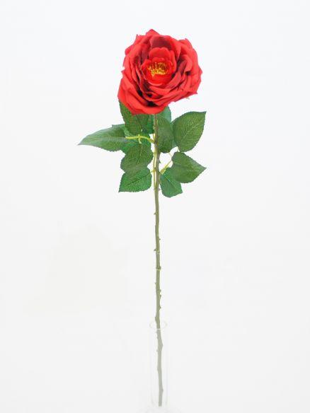 Ruža grana
