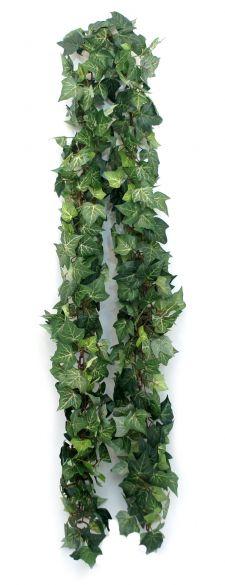 Evergreen ivy girlanda