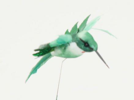 Kolibrić