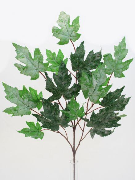 Lišće grana