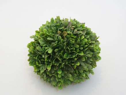 Zelenilo kugla 25 cm