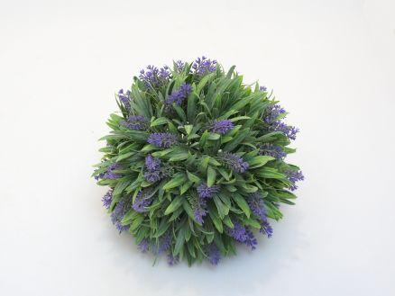 Zelenilo lavanda kugla L