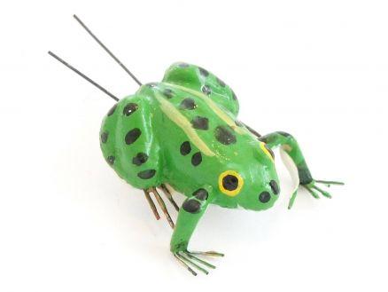 Žaba x 12
