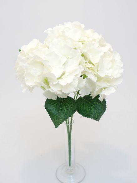 Hortenzija buket x 5